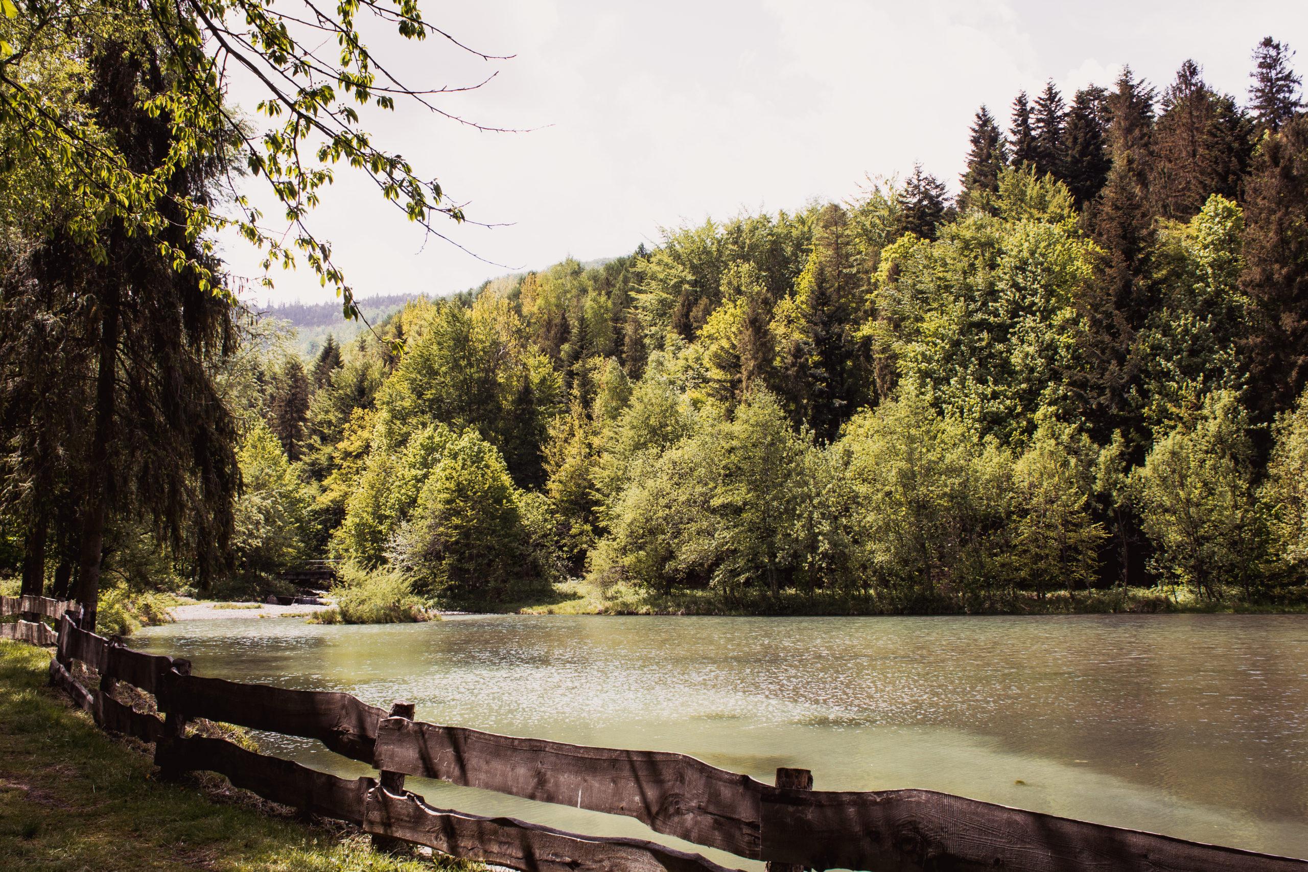 Góry z dzieckiem – Przystań wodna Brenna Hołcyna.