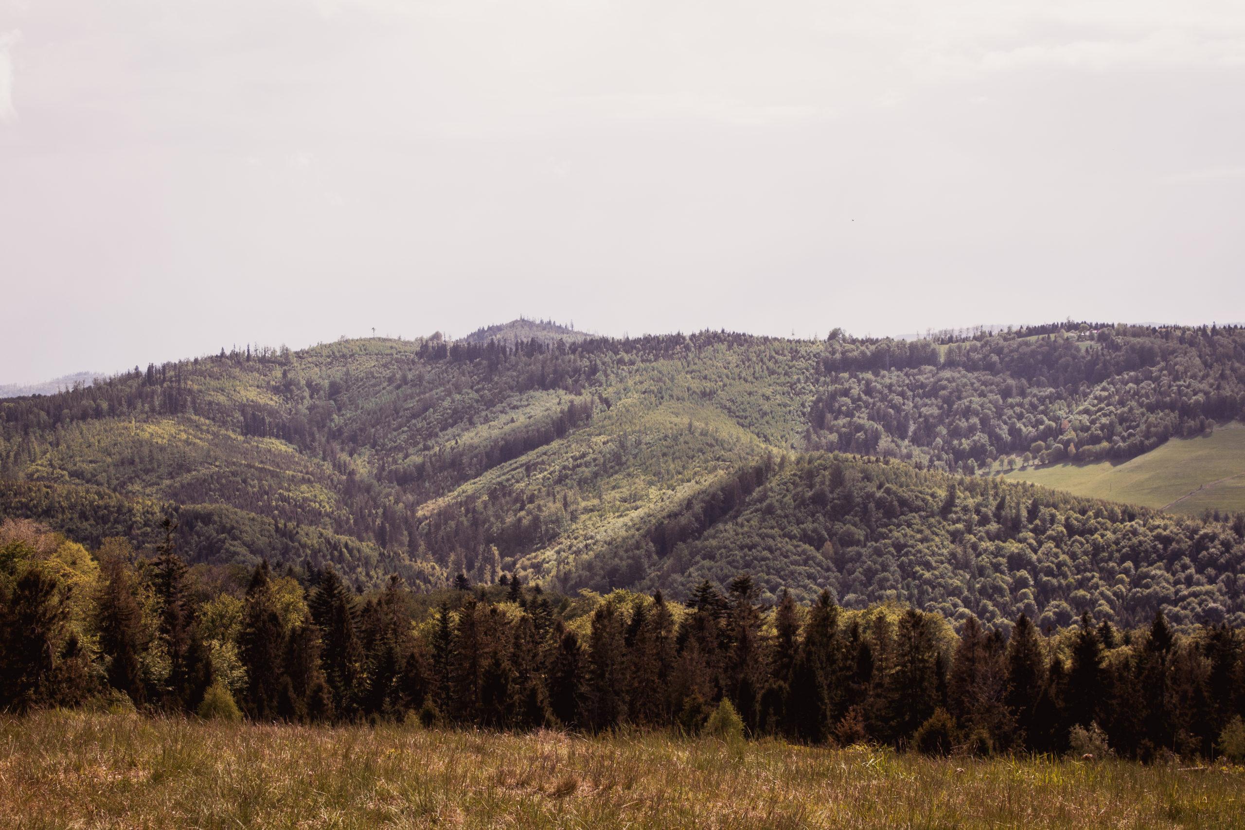 """Góry z dzieckiem – """"Bajkowym Szlakiem Utopca"""".  Brenna – dolina Hołcyna – Grabowa Chata."""