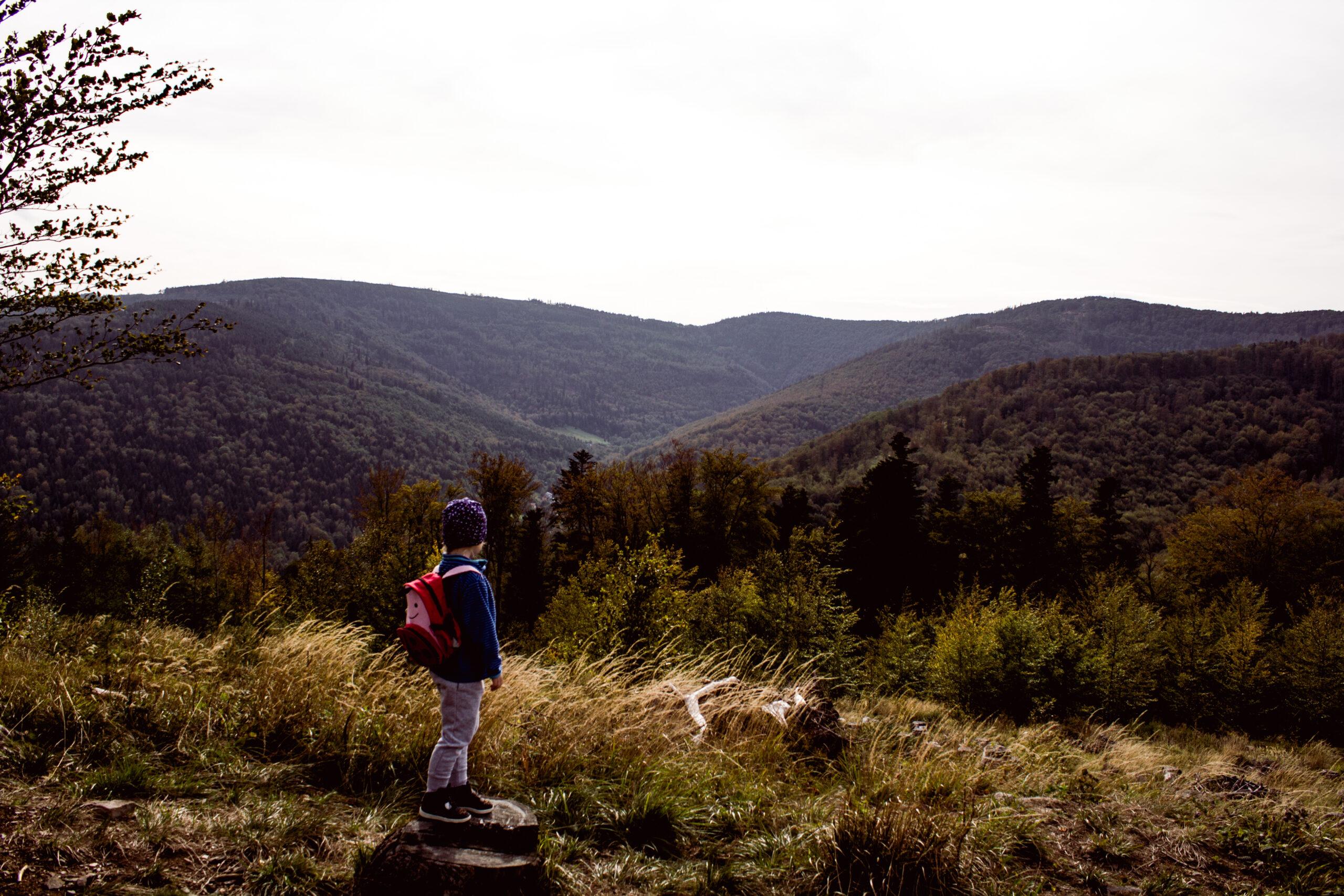 Góry z dzieckiem- Kozia Góra z wózkiem.