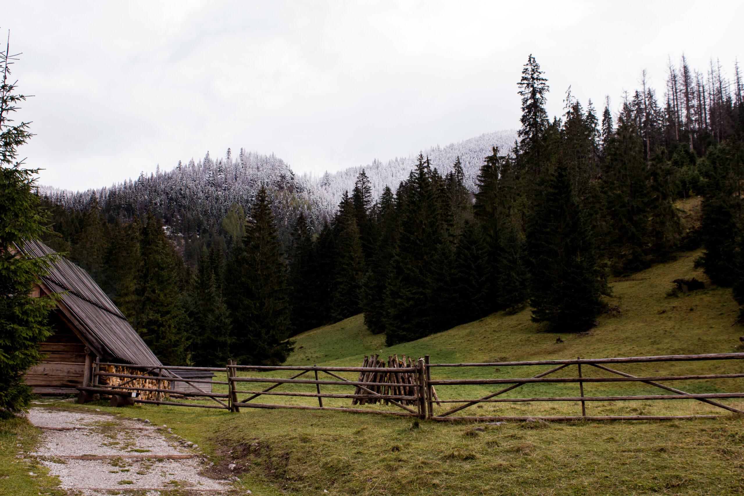 Góry z dzieckiem- Dolina Chochołowska- Polana Huciska.Trasa idealna na wózek.